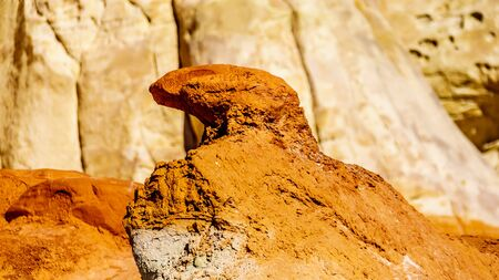 Erosion shaped this Rock Formation to look like a Bird along the Toadstool Hiking Trail between Page, Arizona and Kanab, Utah in Grand Staircase-Escalante Monument in Utah, Unites States