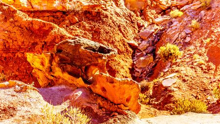 Erosion shaped this interesting Rock Formation like a Car along the Toadstool Trail between Page, Arizona an Kanab, Utah in Grand Staircase-Escalante Monument in the Unites States