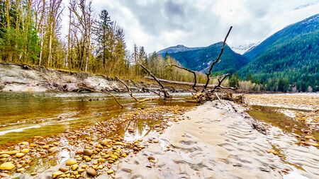 Logs stuck in the sand and Iron Oxide Stained rocks lining the shore at low water in the Squamish River in the Upper Squamish Valley in British Columbia, Canada Stock Photo
