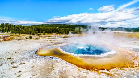 Steam coming out of the Crested Pool in the Upper Geyser Basin along the Continental Divide Trail in Yellowstone National Park, Wyoming, United States