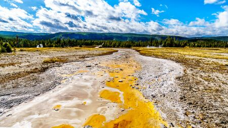 The Bacterial Mat in the drain channel of the Grand Geyser in the Upper Geyser Basin along the Continental Divide Trail in Yellowstone National Park, Wyoming, United States
