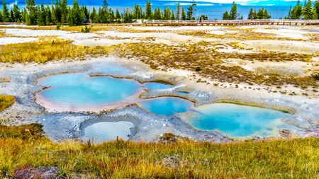 The turquoise colored Painted Pool in the West Thumb Geyser Basin in Yellowstone National Park, Wyoming, United States