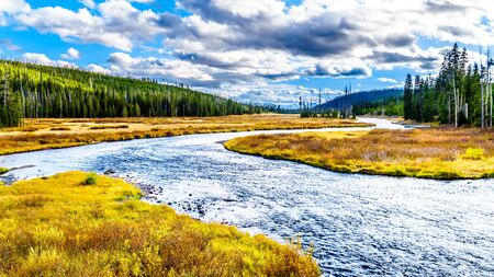 Fall colors surrounding the Lewis River at the crossing with Highway 287 in Yellowstone National Park, Wyoming, United States