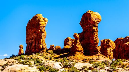Unique Red Sandstone Pinnacles and Rock Fins at the Garden of Eden in Arches National Park near the town of Moab in Utah, United States