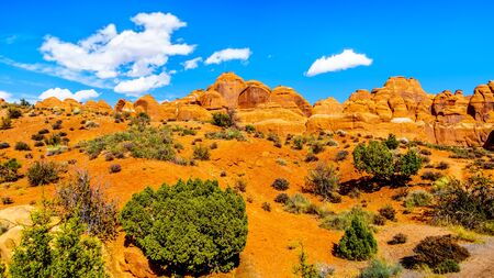 Unique Red Sandstone Pinnacles and Rock Fins at the Devil's Garden in Arches National Park near the town of Moab in Utah, United States