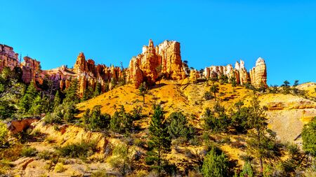 Vermilion colored Pinnacles and Hoodoos around the Mossy Cave hiking trail in Bryce Canyon National Park, Utah, United States