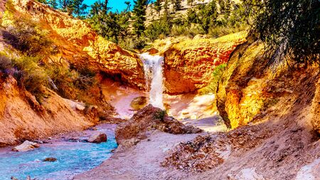 Tropic Ditch Falls as it drops over the vermilion colored rocks at the Mossy Cave hiking trail in Bryce Canyon National Park, Utah, United States