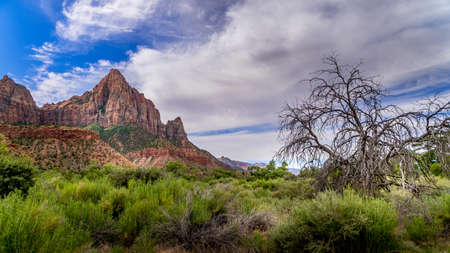 The Watchman mountain viewed from the Pa'rus Trail that meanders along and over the Virgin River in Zion National Park in Utah, USA Archivio Fotografico