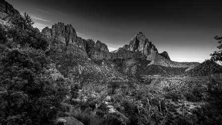 Black and White Photo of The Watchman Peak, Bridge Mountain and Sandstone Cliffs in Zion National Park in Utah, USA