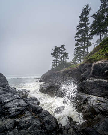 Waves crashing into the Rocks at Cox Bay on a Foggy Day at the Pacific Rim National Park on the West Coast of Vancouver Island, British Columbia, Canada