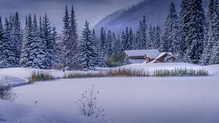 Christmas Card scene of the Snow Landscape at Sun Peaks ski resort in the Shuswap Highlands of British Columbia, Canada Фото со стока