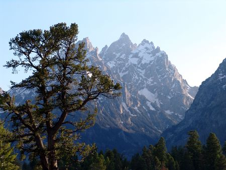 The great tetons