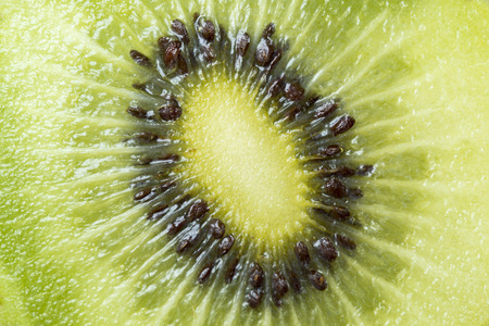 divergence: Kiwi close up