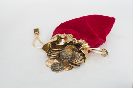 Purse and gold coin
