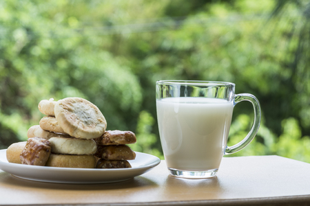 simple life: biscuits and a cup of milk