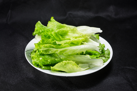 Fresh healthy vegetable lettuce