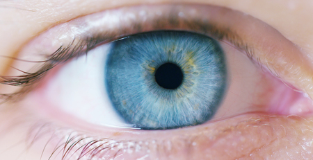 macro eye with perfect blue color. concept of vision and clear eyes