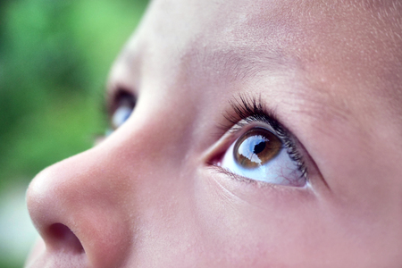 A close up of a little girl (kid) looking up at the sky. Concept: Nature, famity, freedom Banco de Imagens