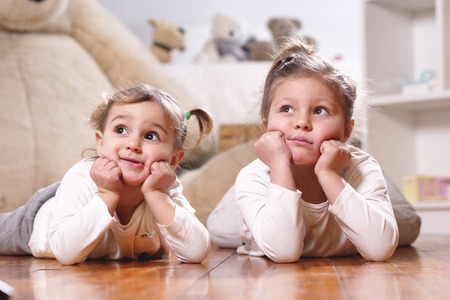 Stuffed animals and the dollhouse. Concept of: family, sisters, home and happiness