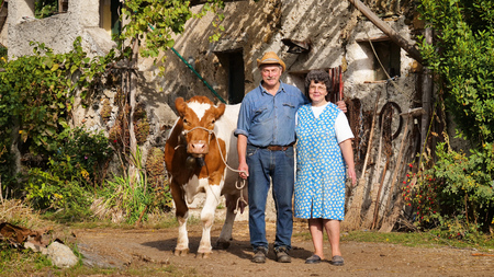 Portrait of a typical family of farmers with their cow. Concept of: tradition, love for animals, vegan. Banco de Imagens - 118556854