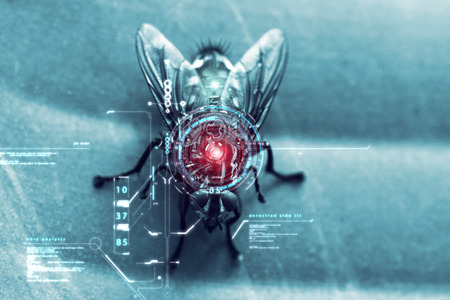 fly with biometric and bionic systems, for safety and for the study of cyber security. concept of spy cameras and future.