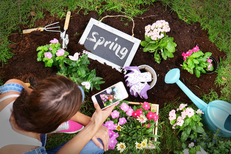A woman, while using the phone, makes flowers and flowers to give color and decorate her garden, with various tools and a small blackboard with Spring writing. Concept of: gardening, app