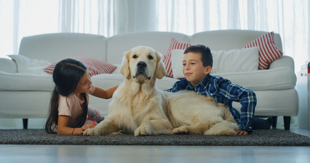 Portrait of little brother and sister cuddling their dog in living room. Concept of love for animals, childhood, pedigreed dog