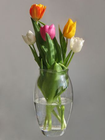 The bouquet of five variegated beatuful tulips photo