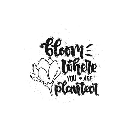 Vector hand drawn illustration. Lettering phrases Bloom where you are planted. Idea for poster, postcard. Ilustrace