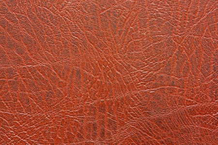 Oude huid