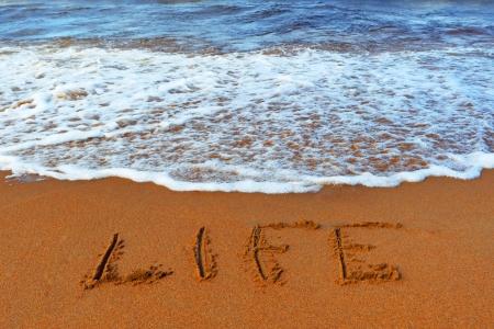 Inscription on sand   life