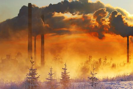 contaminacion ambiental: La contaminaci�n del medio ambiente