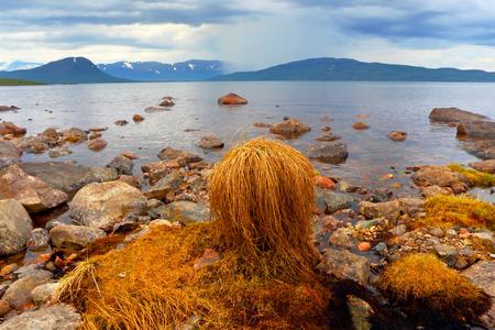 Abisko s national park  Sweden  Norrbotten  Lapland  Lake Tornetrask
