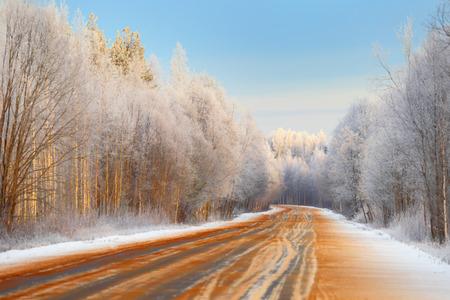 open road: Open road. Winter forest.