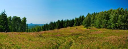Stitched Panorama of mountains meadow