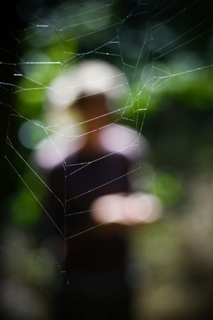 Silhouette of a man in a spiders web