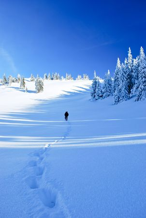 wander: Guy in the distance and line of his footprints in frozen country