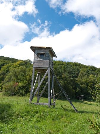 Forest glade with hunting lookout tower and feeder for animals