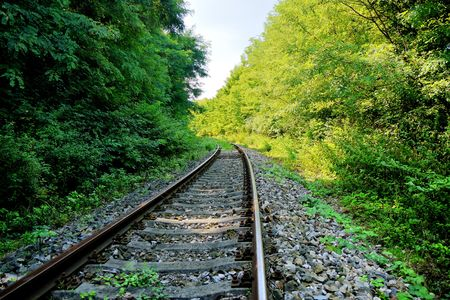Railway line passing through the quiet forest photo