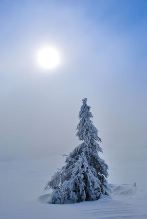 Cold winter sun in the snowy mountains