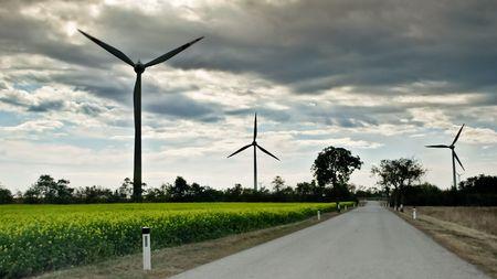 Weg durch die Felder Wind Turbine und Raps