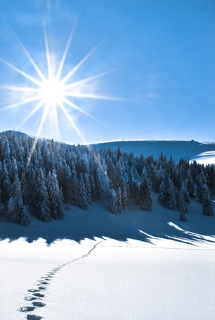 Winter scenery, sun shining on the snow fields with human footprints lines