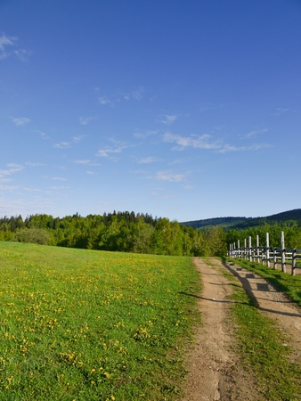 spring meadow with country road leading alongside the wooden railing Stock Photo - 8734193