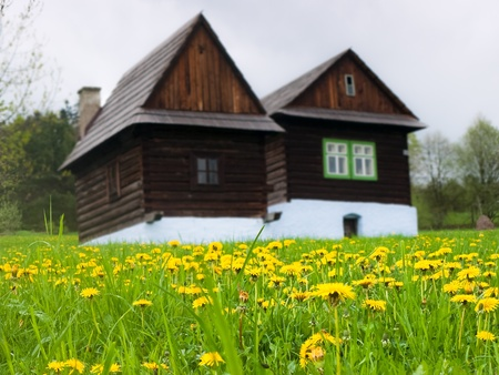 Meadow with dandelion and old traditional houses in the background Stock Photo