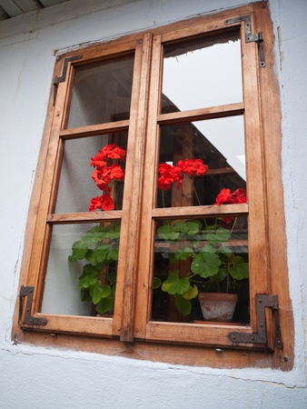 look at the window with flowers inside the  old house Stock Photo - 10845139