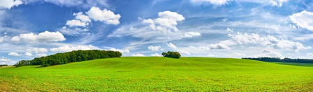 panorama of green fields and beautiful blue sky