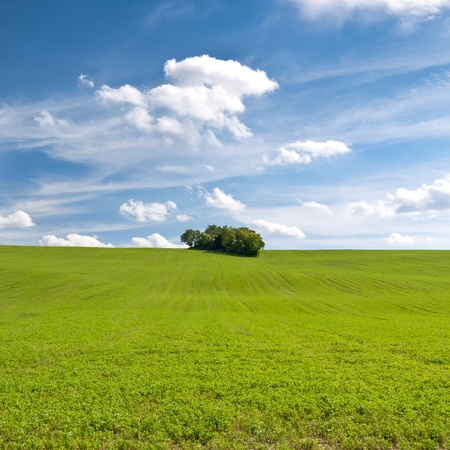 green field and beautiful blue sky with clouds Stock Photo - 10845146