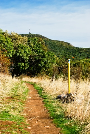 Trail leading into the forest below the hill with the transmitter Stock Photo - 12358280