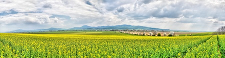Spring panorama of fields and meadows with mountains in the distance and rainy gloomy skies photo