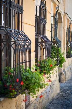 Elegant window security bars with geraniums in flowerpots on old house photo